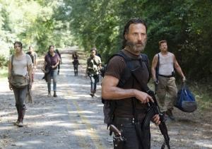 the-walking-dead-them
