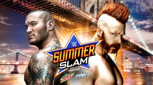 20150810_Summerslam_Match_OrtonSheamus_LIGHT-HP