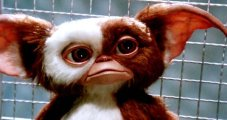 Gremlins-3-Script-Rejected-Timezone-Rules