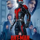 ant_man-627211491-large